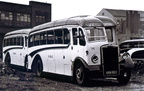 1949 Leyland PS1 - Burlingham BRN 862