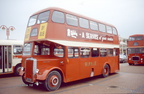 1956 - Leyland PD2 - Burlingham  JCK 530